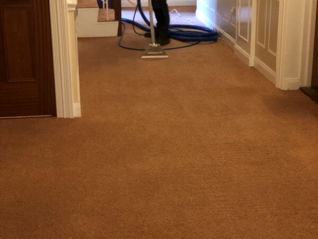 Communal carpet cleaning by Edinburgh Clean